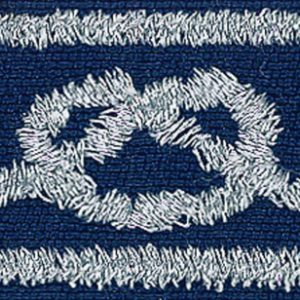 District Award of Merit award is a blue rectangular patch with a silver border and square knot