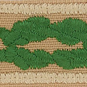 The Scouter's Training Award is a khaki rectangular patch with a double green knot